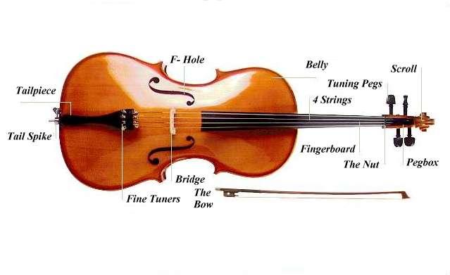external image cello.jpg