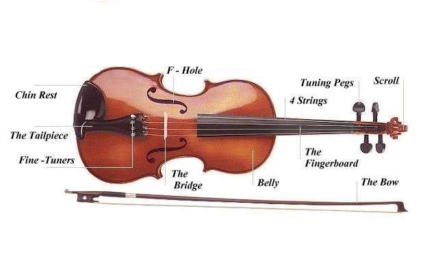 http://www.asinari.it/violin.jpg